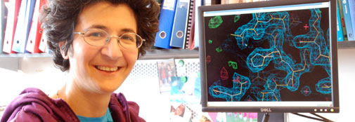 Leila Lo Leggio is in charge of chemical research into X-ray crystallography